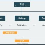 kundanalys och CLV