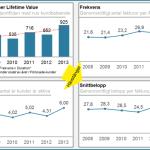 Faktabaserad kundanalys – CLV liten