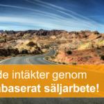 Faktabaserat_säljarbete_hem_14