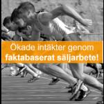 Faktabaserat_säljarbete_hem_16